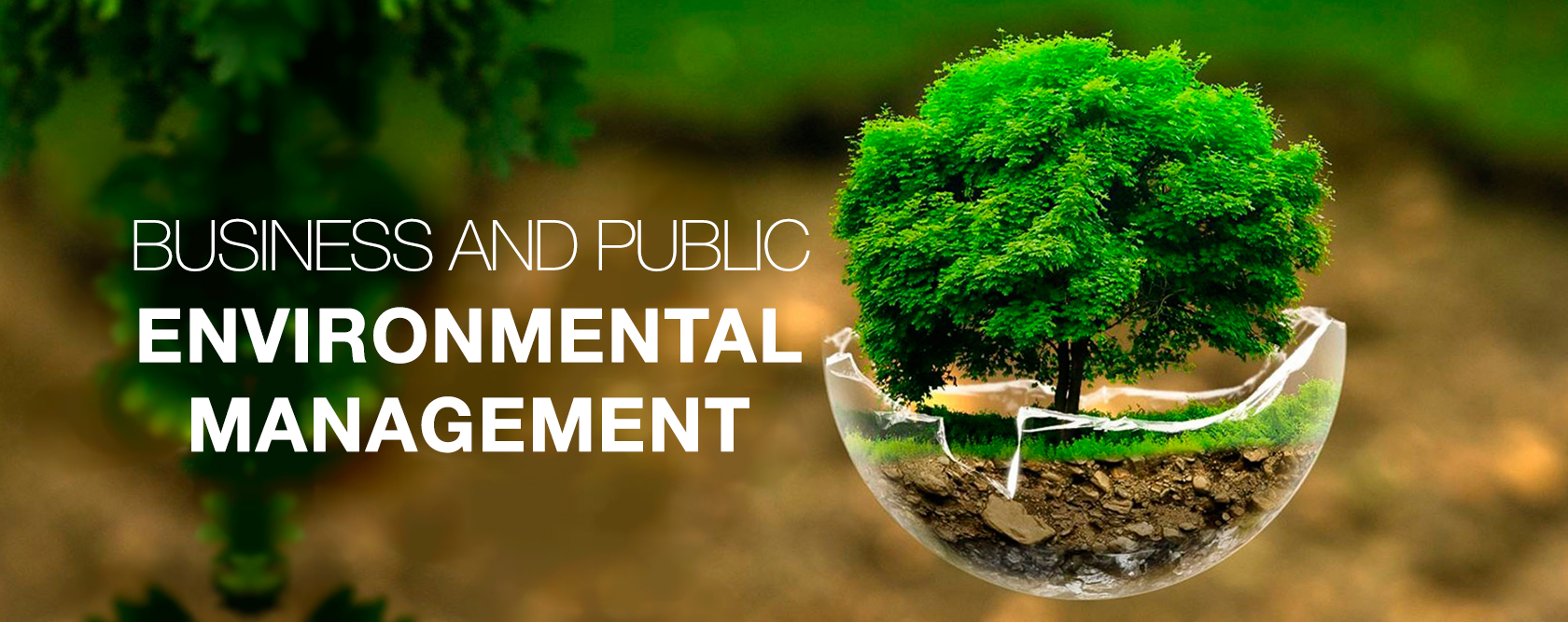 02 03 BusinessAndPublicEnvironmentalManagement destaque